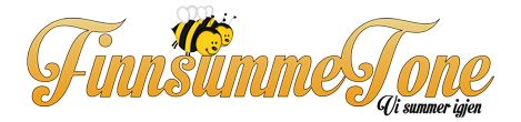 FinnSummeTone logo